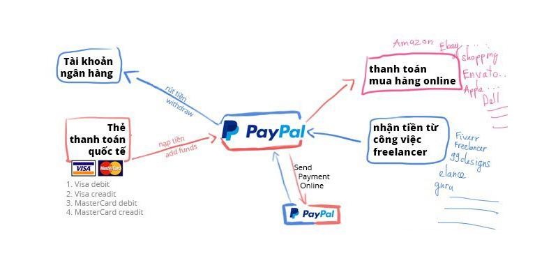 Paypal hoạt động như thế nào