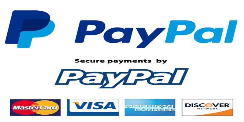 Hình thức thanh toán Paypal là gì