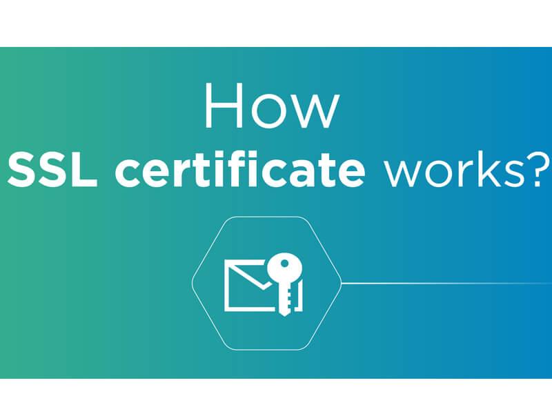 Khi nào nên sử dụng SSL và lý do thiết thực